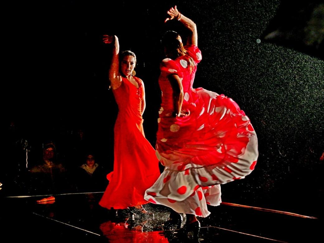 Flamenco_im_Regen